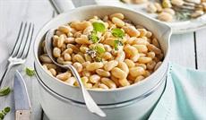 白いんげん豆